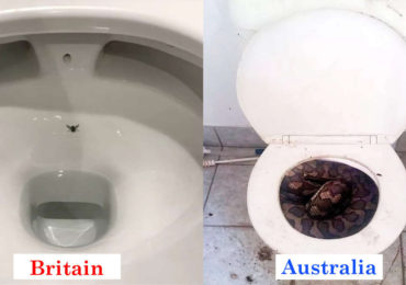 Here Are 10 Bizarre Pictures That Shows The Difference Between Britain And Australia