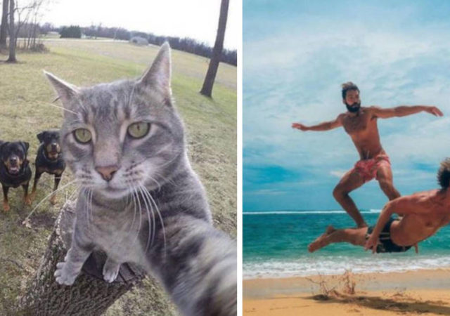 10 Pictures That Were Clicked With Perfect Timing