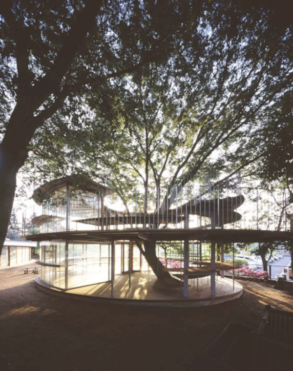 1. Ring around a tree, Tokyo, Japan
