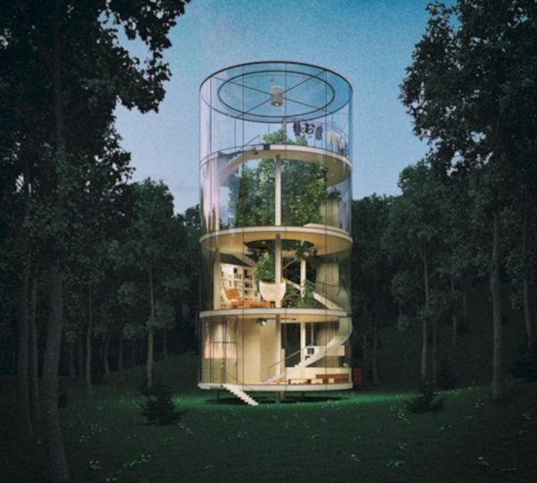 3. Tree in the house, Almaty, Kazakhstan