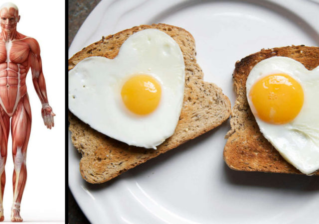 Things That Will Happen to Your Body if You Start Eating 2 Eggs a Day