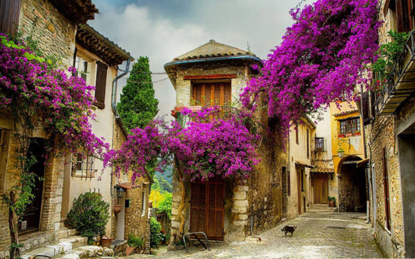 1. Small Village in Provencal France