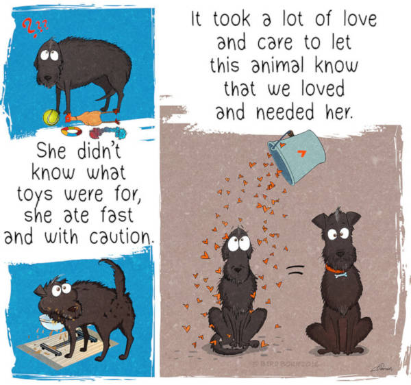 13 Heart-Warming Comics Show Why It Is Important To Rescue A Shelter Dog - 3