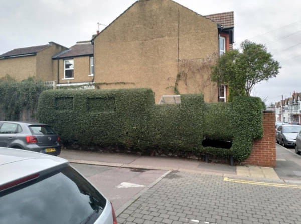 2. Hedge in motion