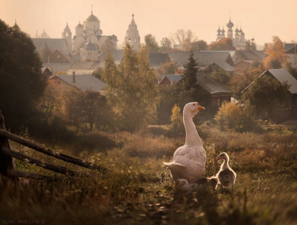 34. Suzdal in Russia