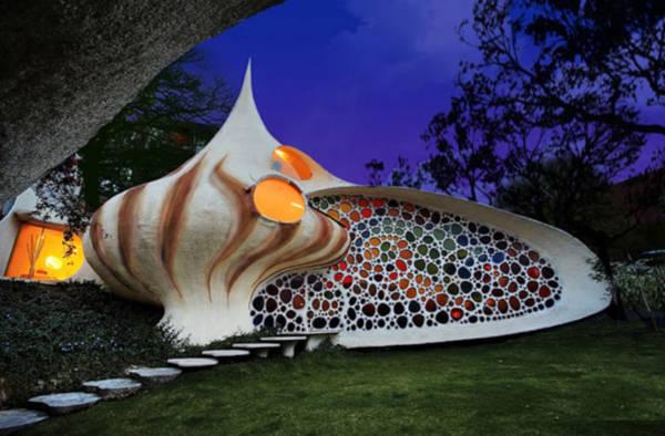 6. Seashell
