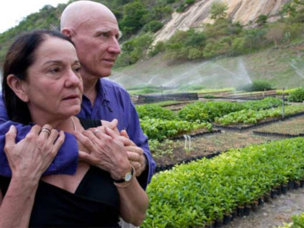 Amazing Images Of 20-Year Reforestation Project - 3