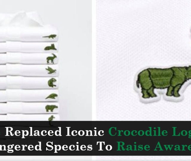 bf25d7fa525c Lacoste Replaced Iconic Crocodile Logo With Endangered Species To Raise  Awareness - Truth Inside Of You