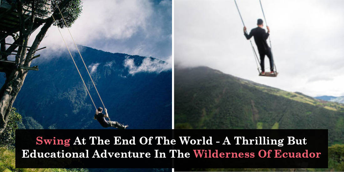 Swing At The End Of The World - A Thrilling But Educational Adventure In The Wilderness Of Ecuador