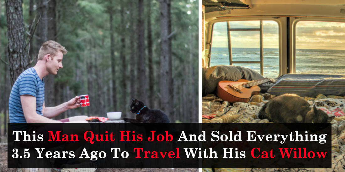 This Man Quit His Job And Sold Everything 3.5 Years Ago To Travel With His Cat Willow