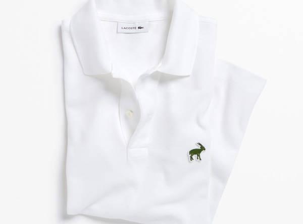 lacosteshirt2
