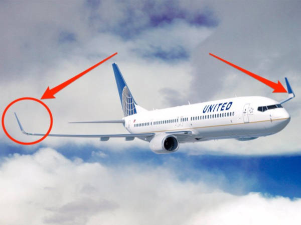 2. Why Are The Wing Tips Not Straight