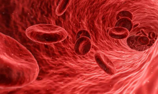 8.-Blood-usually-clots-a-lot-faster-during-pregnancy