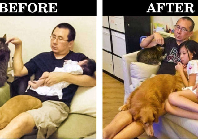 Before & After Photos To Remind You That Time Passes And Things Change