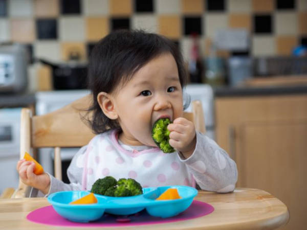 4. How To Approach Picky Eating Habits