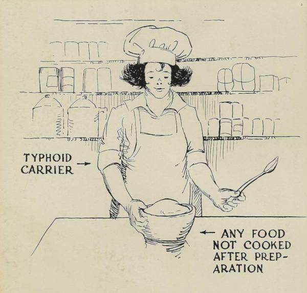 Typhoid carrier