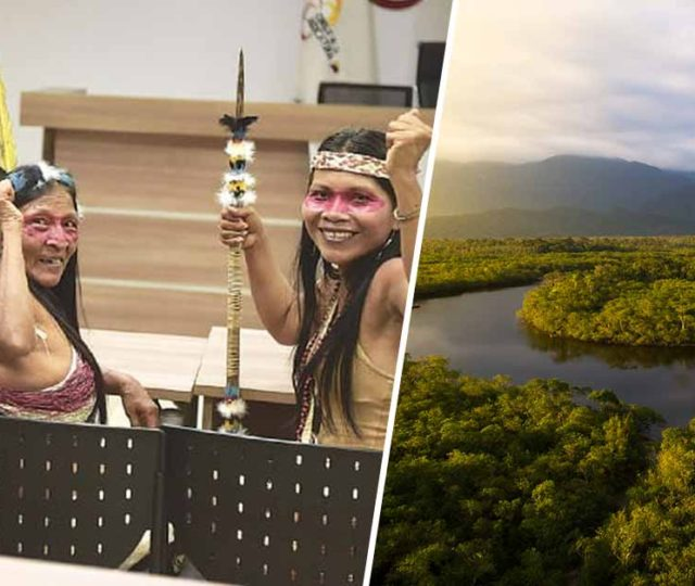 Amazon Tribe Wins Lawsuit Against Big Oil, Saving Millions Of Acres Of Rainforest