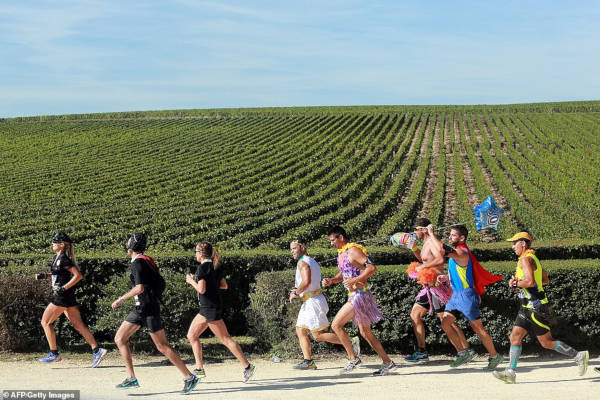 French Marathon Where Contestants Drink Wine And Eat Cheese - 5
