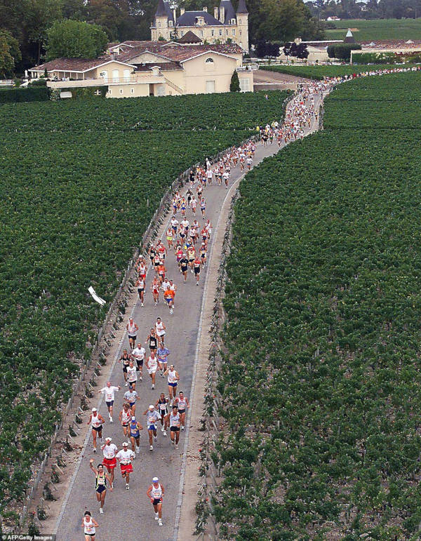 French Marathon Where Contestants Drink Wine And Eat Cheese - 6
