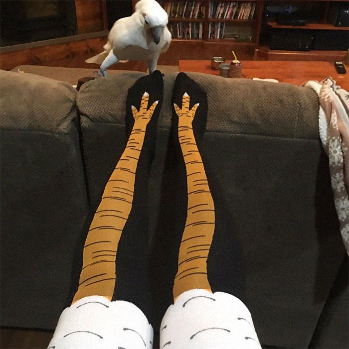 19 Funny Photos Of People Wearing Chicken Leg Shocks - 3
