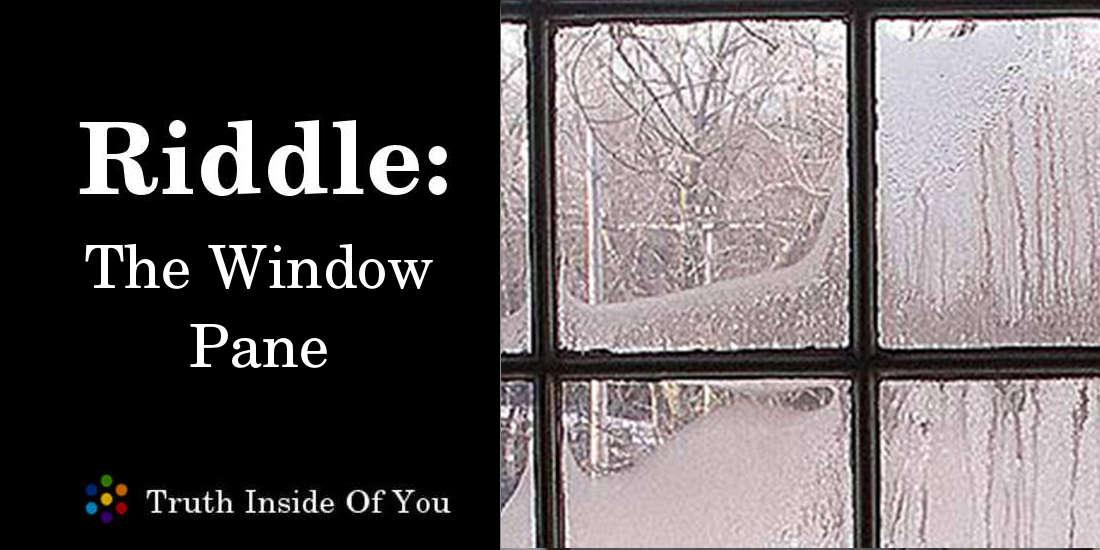 the window pane